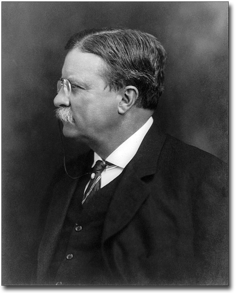 PRESIDENT THEODORE ROOSEVELT NEW JERSEY 8x10 SILVER HALIDE PHOTO PRINT