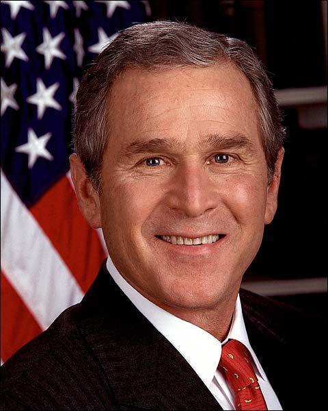 President George W. Bush Official Portrait Photo Print for Sale