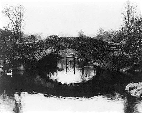 Central Park New York City Pine Arch Bridge Photo Print for Sale