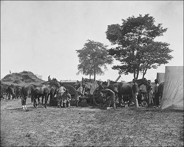 Civil War Battle of Antietam Maryland 1862 Photo Print for Sale