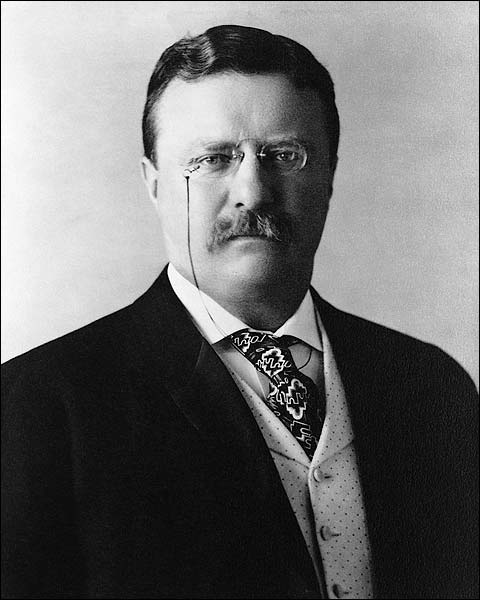 President Theodore Teddy Roosevelt Photo Print for Sale
