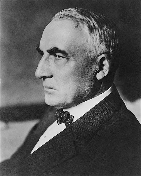 U.S. President Warren Harding Portrait 1920 Photo Print for Sale