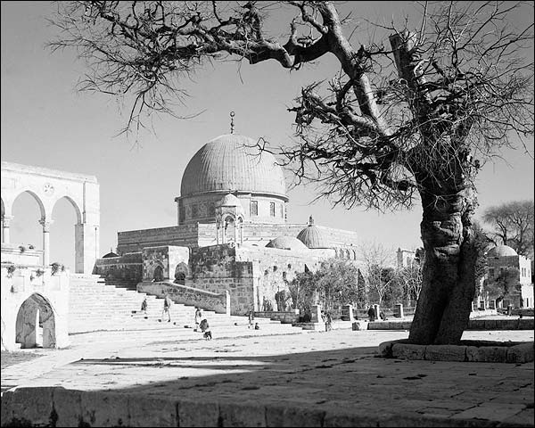 Dome of the Rock Islamic Shrine Jerusalem Photo Print for Sale