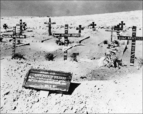 Graves of French Soldiers North Africa WWII Photo Print for Sale