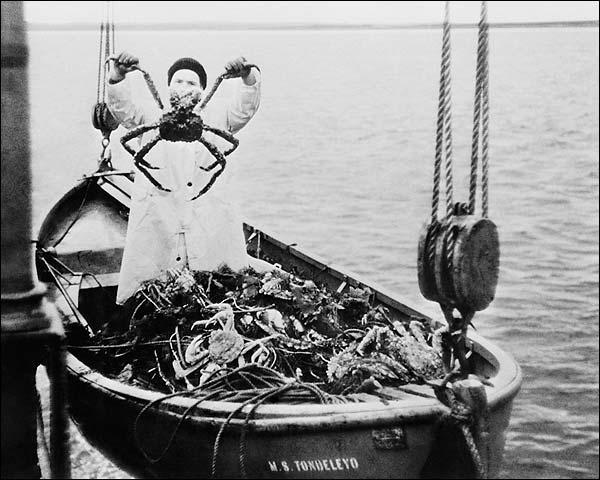 King Crab & Fisherman Bering Sea WWII Era Photo Print for Sale