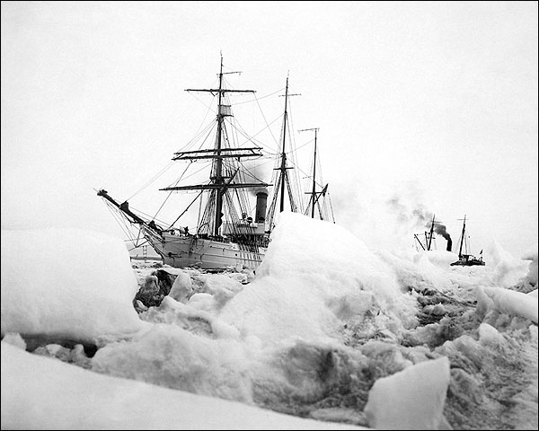 Icebergs & Ships Nome, Alaska Early 1900s Photo Print for Sale