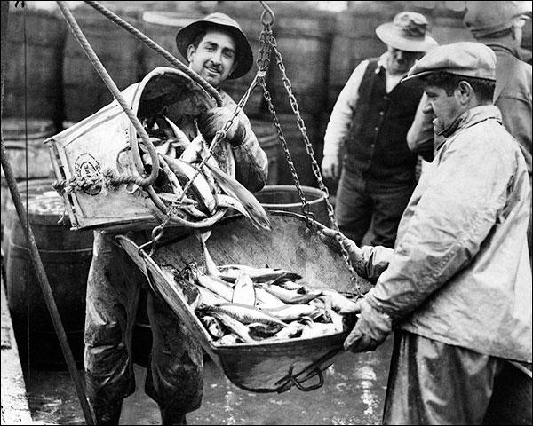 Fulton Fish Market New York City 1934 Photo Print for Sale