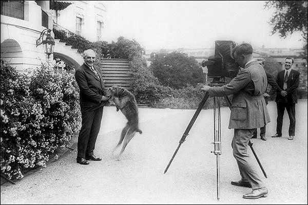 President Warren G. Harding w/ Pet Dog Photo Print for Sale