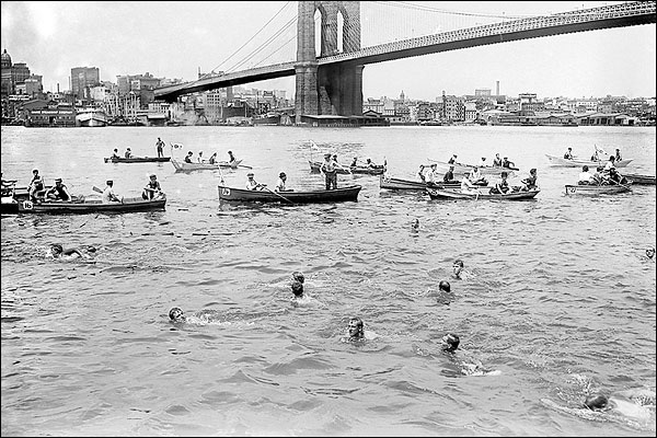 Swimming Race Past Brooklyn Bridge New York Photo Print for Sale