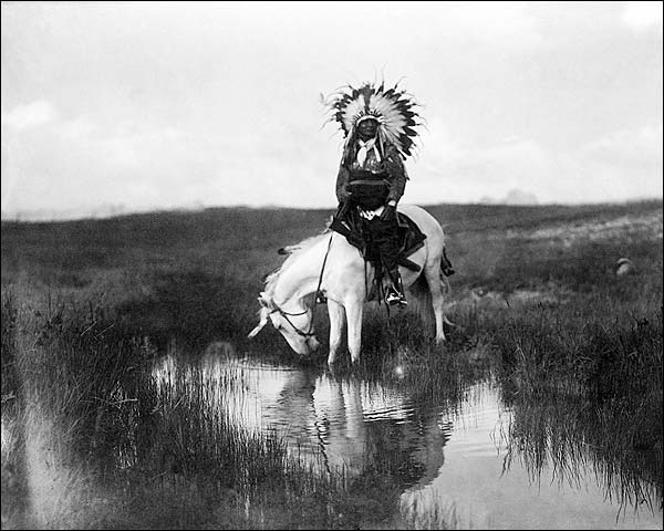 Edward S. Curtis Cheyenne Indian on Horse Photo Print for Sale