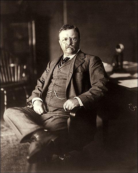 President Theodore Roosevelt 1910 Portrait Photo Print for Sale