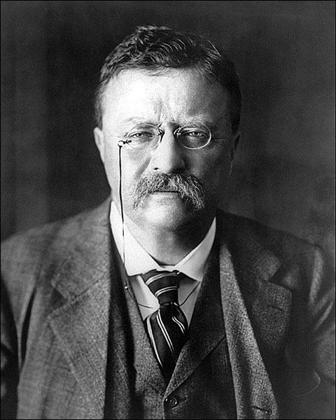 President Theodore Roosevelt Portrait Photo Print for Sale