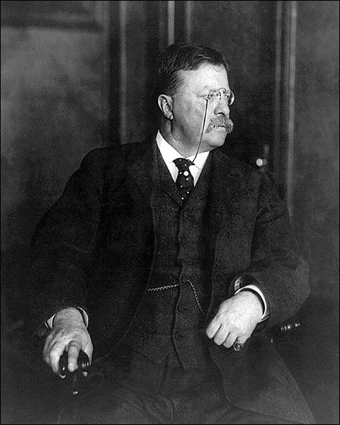 President Theodore Roosevelt 1912 Portrait Photo Print for Sale
