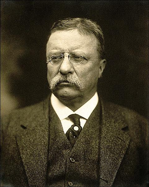 President Theodore Roosevelt Portrait Photo Print for Sale