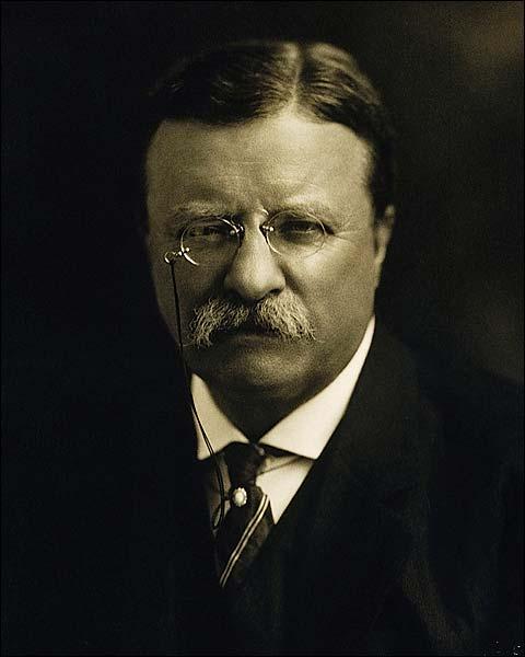 President Theodore Roosevelt 1913 Portrait Photo Print for Sale