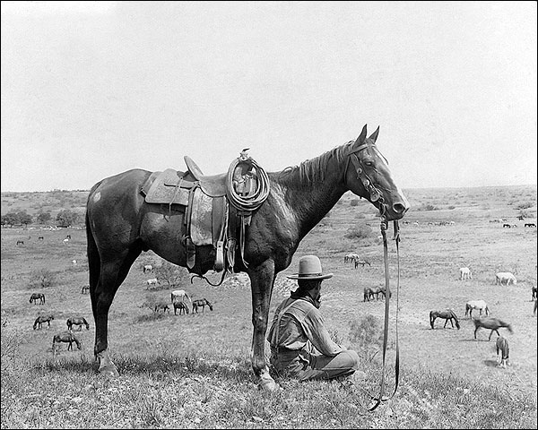 Old west cowboy horses bonham texas 1910 photo print for for Photography prints for sale