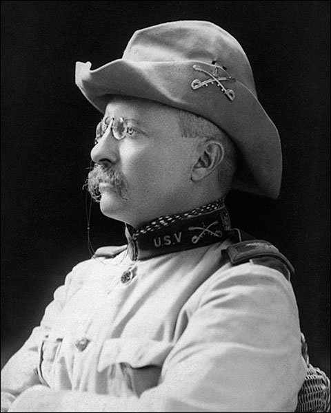 Theodore Roosevelt Portrait, 1898 Photo Print for Sale