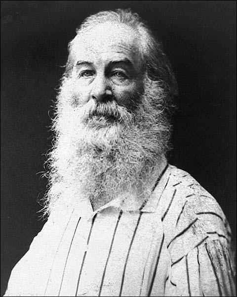 Walt Whitman Portrait Poet Leaves of Grass Photo Print for Sale