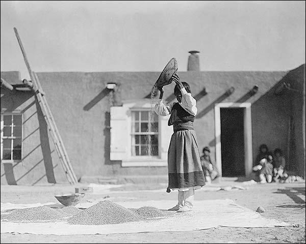 Tewa Woman Winnow Wheat Edward S. Curtis Photo Print for Sale