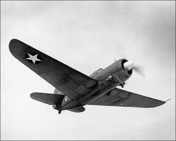 Curtiss SB2C Helldiver in Flight WWII  Photo Print for Sale