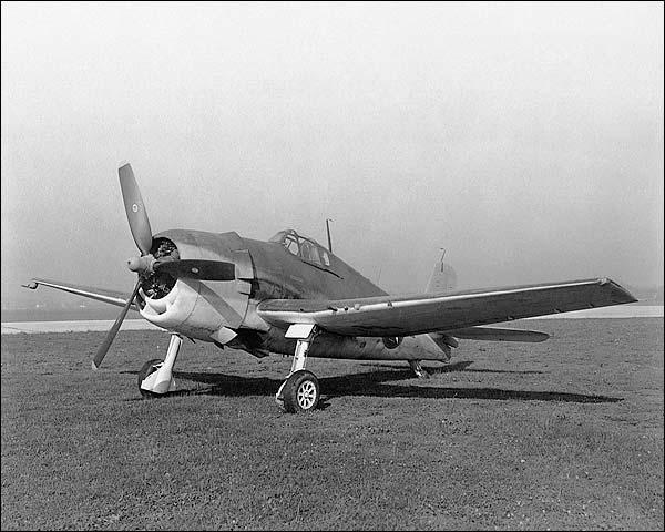 WWII Grumman F6F-3 Hellcat  Photo Print for Sale