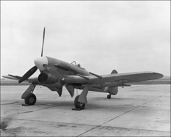 WWII Hawker Typhoon British Aircraft Photo Print for Sale