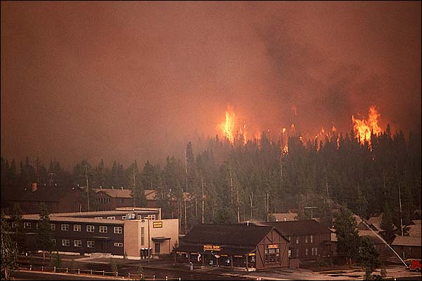 1988 Yellowstone Fire Near Old Faithful Building Complex Photo Print for Sale