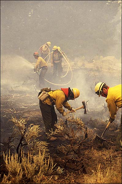 Firefighters Clearing Brush After Yellowstone Wildfires Photo Print for Sale
