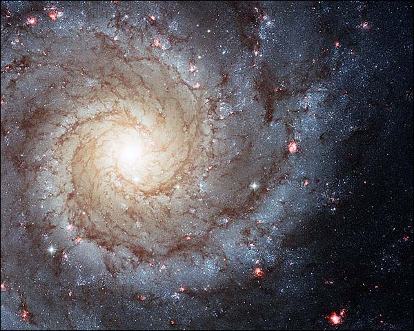 Grand Design Spiral Galaxy Hubble Space Telescope Photo Print for Sale