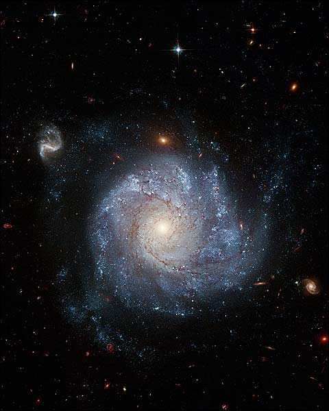 Pinwheel Shaped Spiral Galaxy Hubble Space Telescope Photo Print for Sale