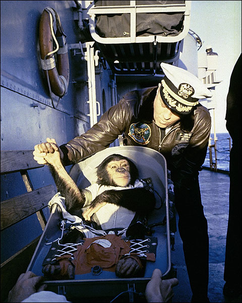 1st American Astronaut Ham the Chimp Photo Print for Sale