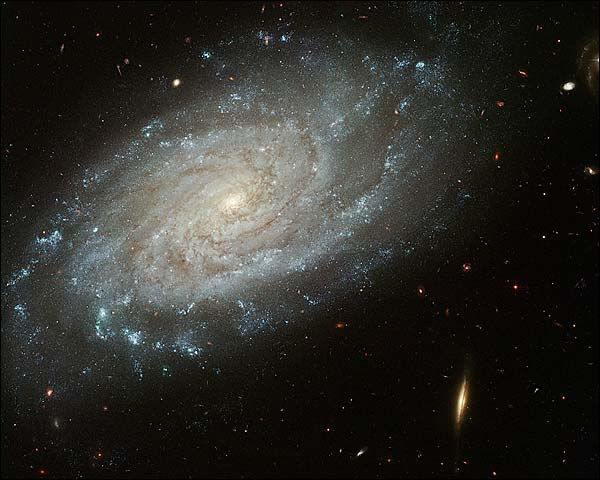 Hubble Space Telescope NGC 3370 Galaxy Photo Print for Sale