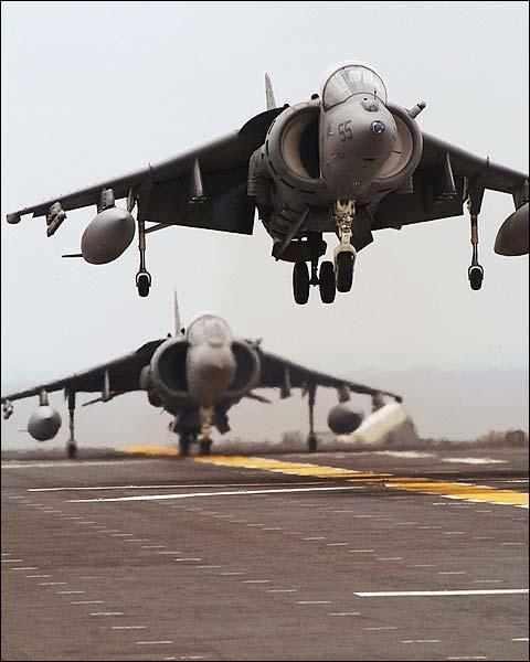 AV-8 / AV-8B Harrier VMA-214 Black Sheep Photo Print for Sale