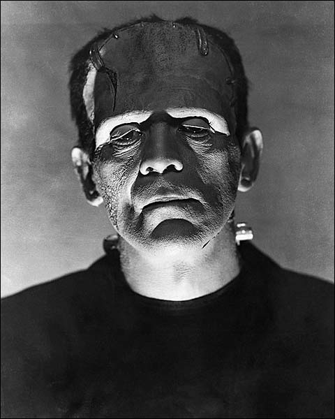 Boris Karloff in 'Bride of Frankenstein' 1935 Photo Print for Sale