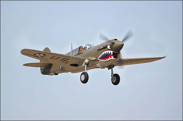 Curtiss P-40 Warhawk WWII Fighter Plane Photo Print for Sale