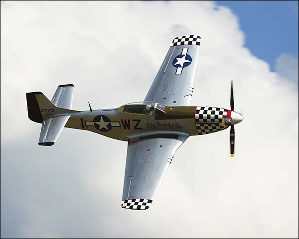 P-51 / P-51D Mustang Big Beautiful Doll  Photo Print for Sale
