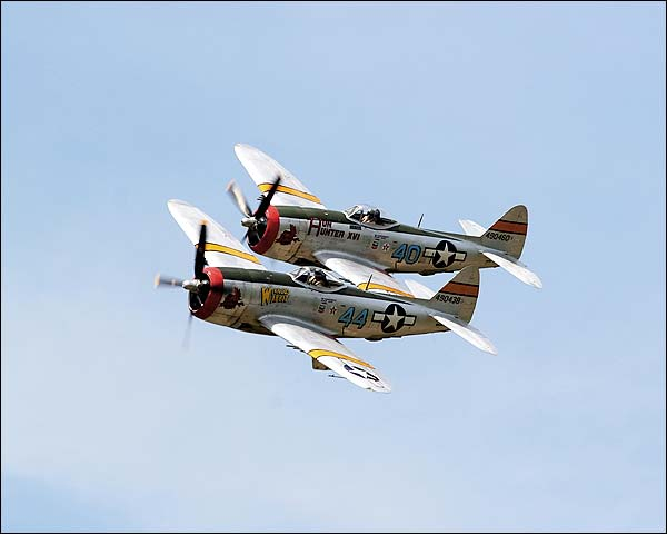 P-47 Thunderbolt WWII Fighter Aircraft Photo Print for Sale