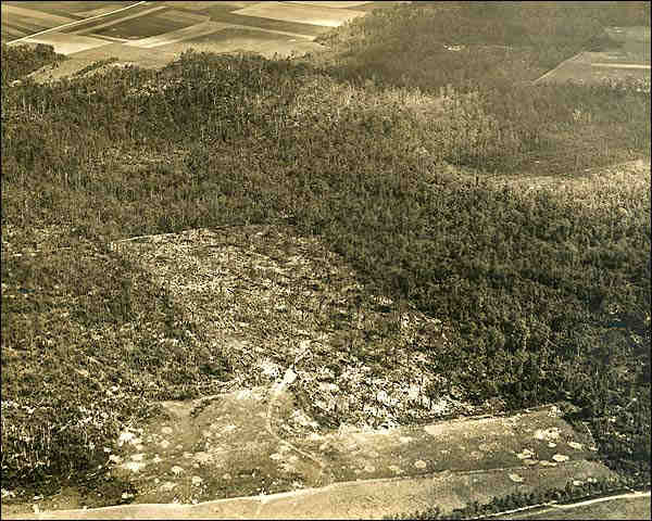 Aerial View of Belleau Woods in France WWI Photo Print for Sale