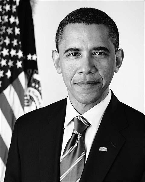 Official Presidential Portrait of Barack Obama Photo Print for Sale