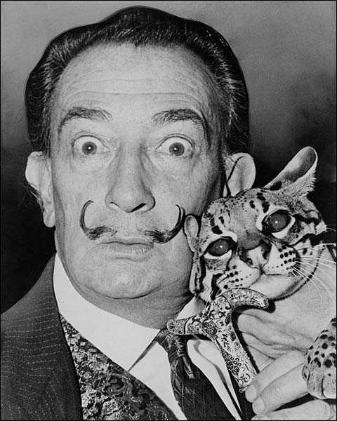 Salvador Dali with Ocelot 1965 Portrait Photo Print for Sale