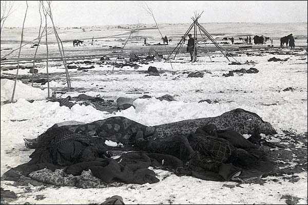Wounded Knee Massacre Aftermath Photo Print for Sale
